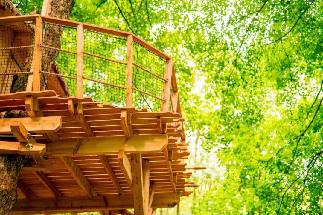 Treehouse pod Ještědem