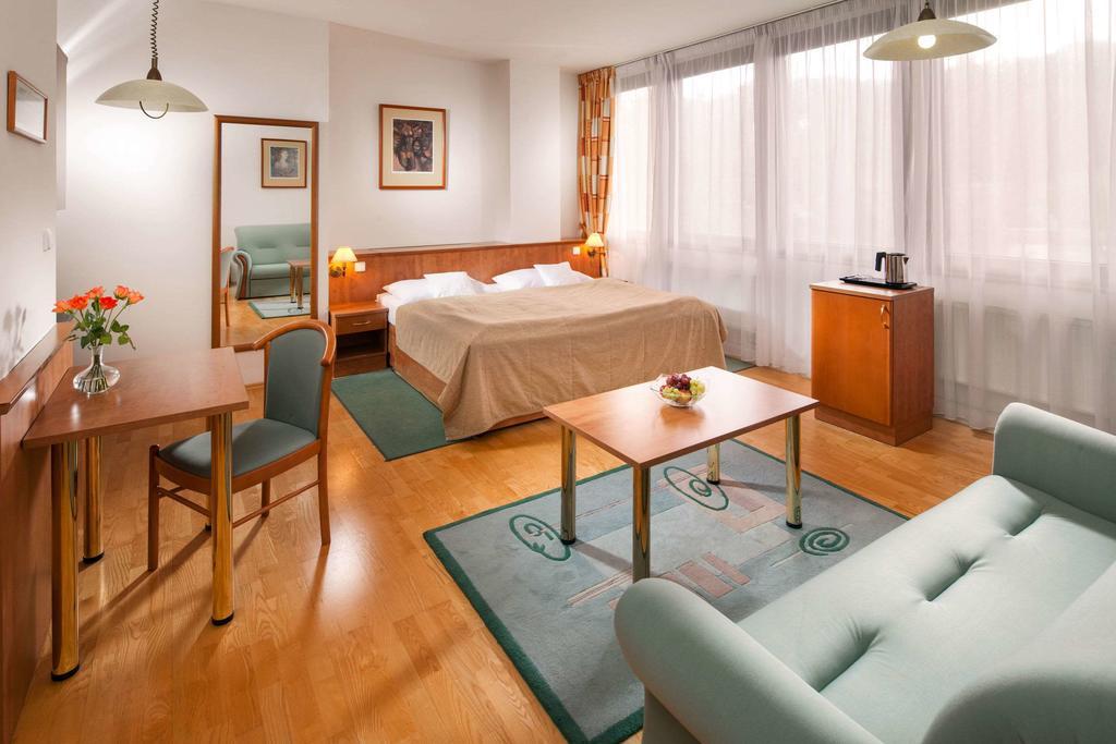 Comfort Hotel Ústí nad Labem City