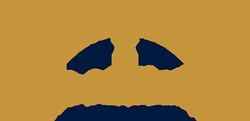 Hotel Palace Art
